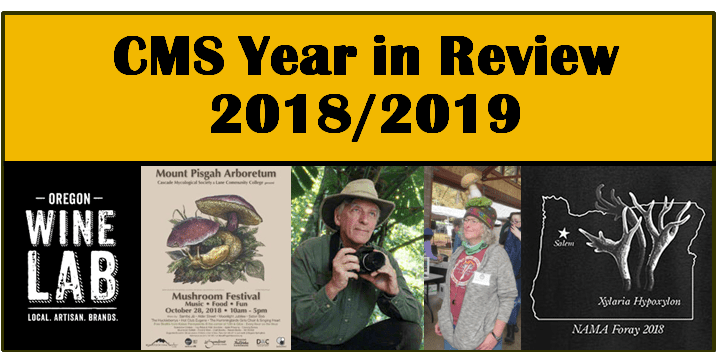Yachats Mushroom Festival 2020 2018 2019 CMS Year in Review – Cascade Mycological Society